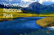 پارک ملی یلواستون Yellowstone National Park